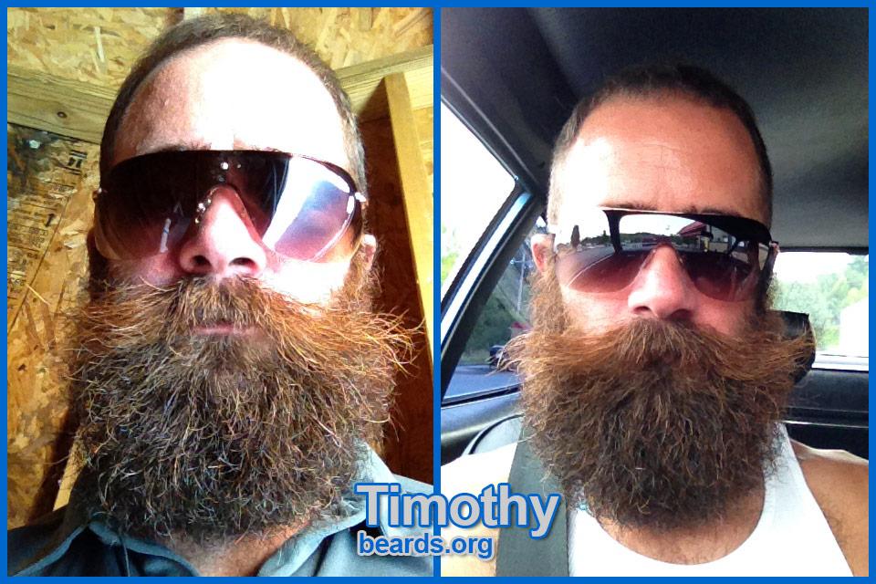 Timothy's outstanding beard