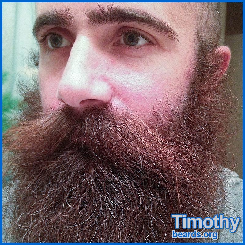 Click to go to Timothy's photo album.