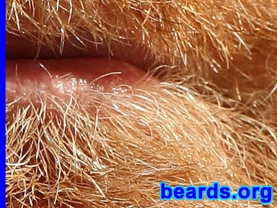 detail of Paulie's beard