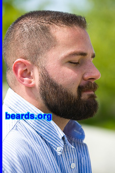 The Shape Of The Beard All About Beards