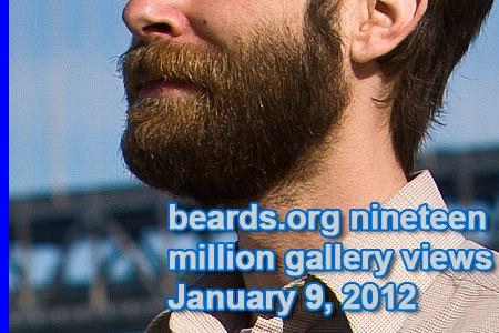 nineteen million beards.org gallery views