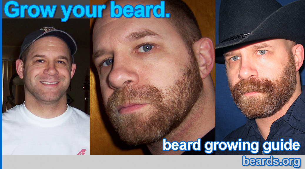 Admirable How To Grow A Beard All About Beards Hairstyle Inspiration Daily Dogsangcom