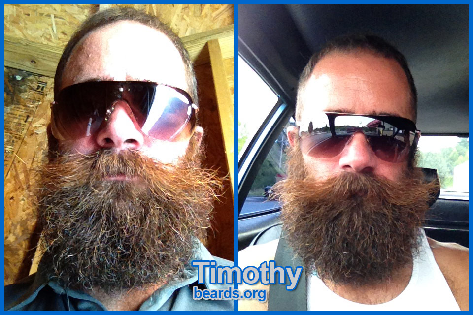 Timothy's outstanding beard