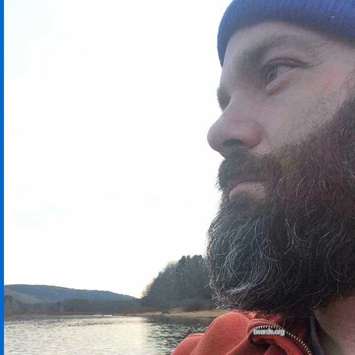 Gary, beard photo 3
