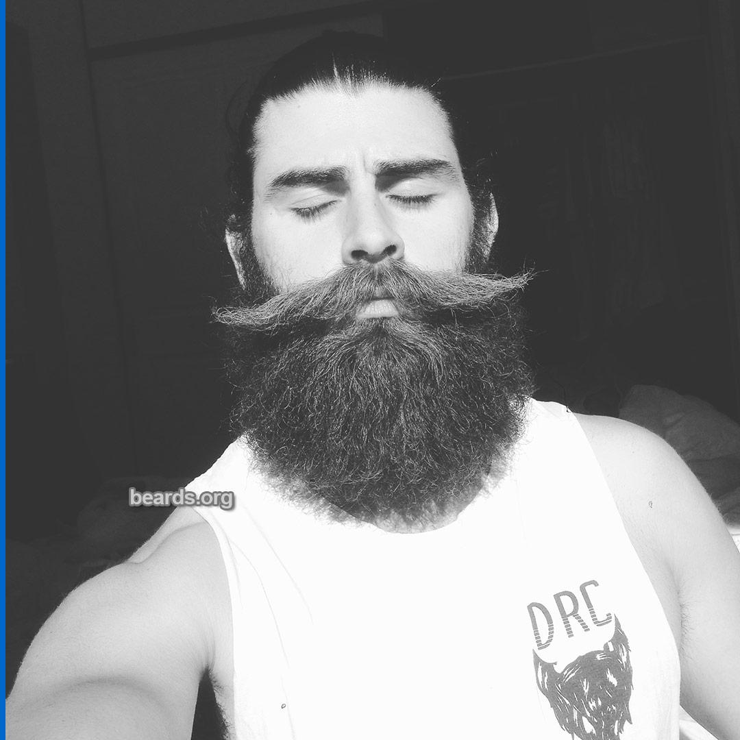 Kurtis, beard photo 1