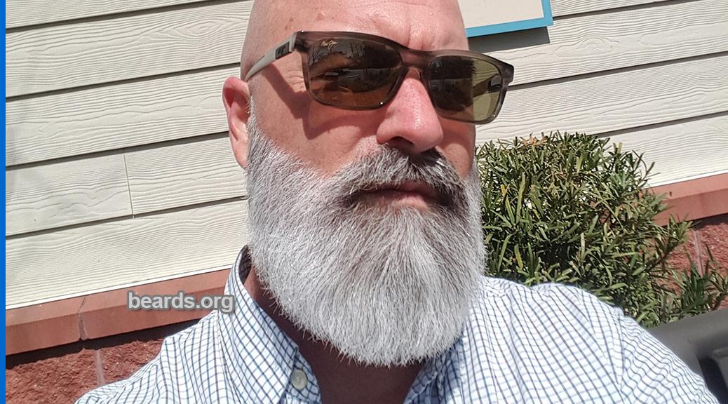 Pleasing Blog All About Beards Beards Org Short Hairstyles Gunalazisus