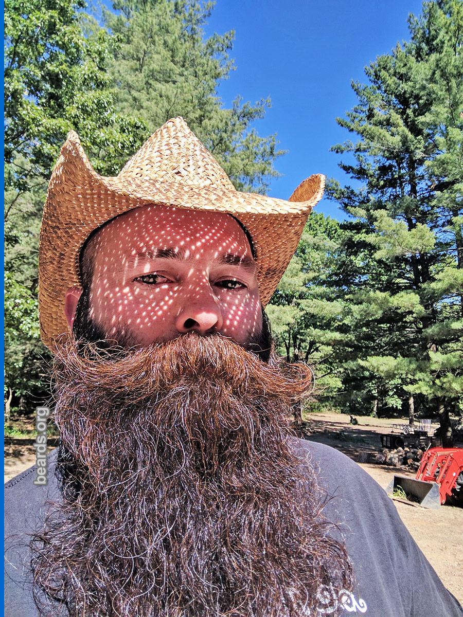Joe, beard image 2
