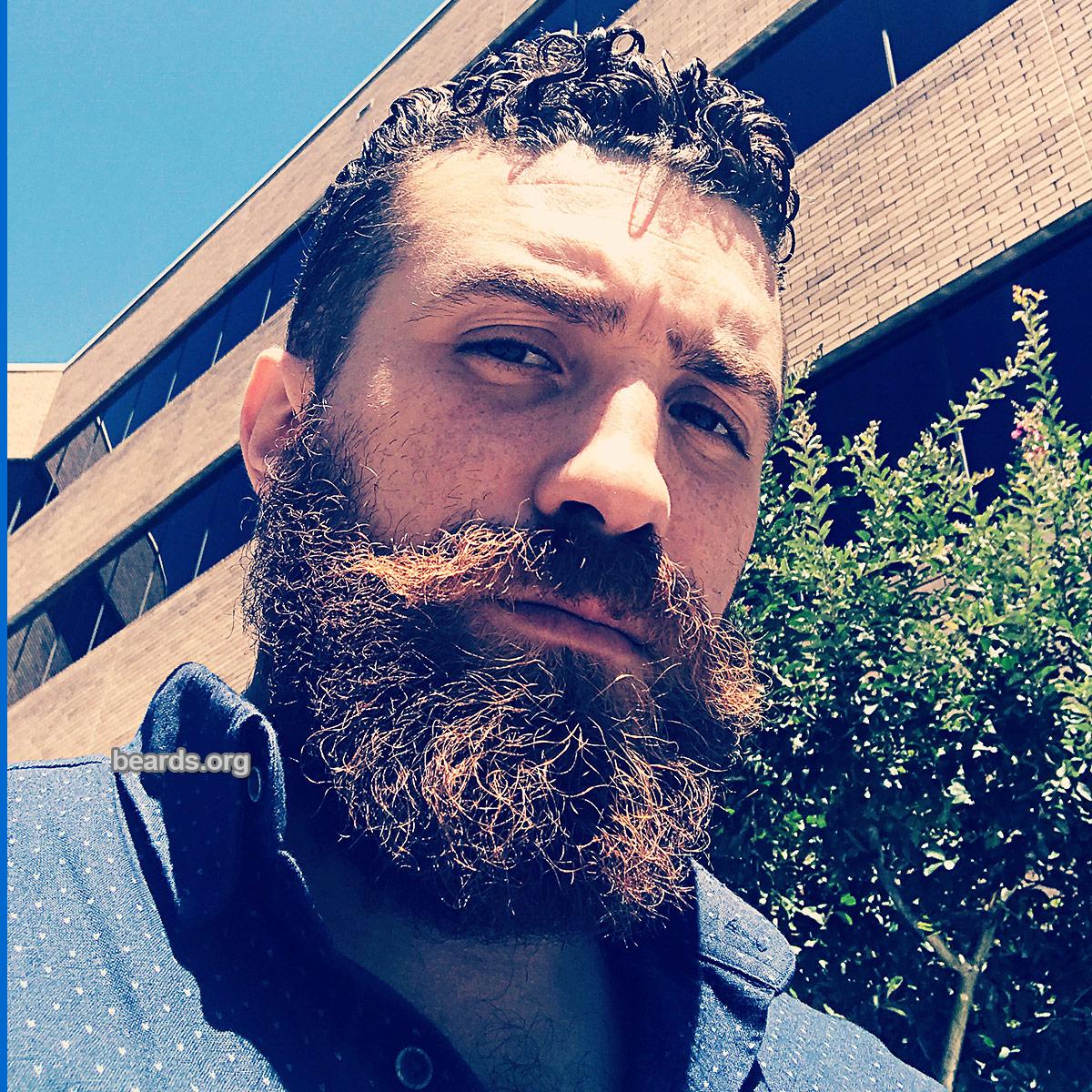 Sam, beard photo 3