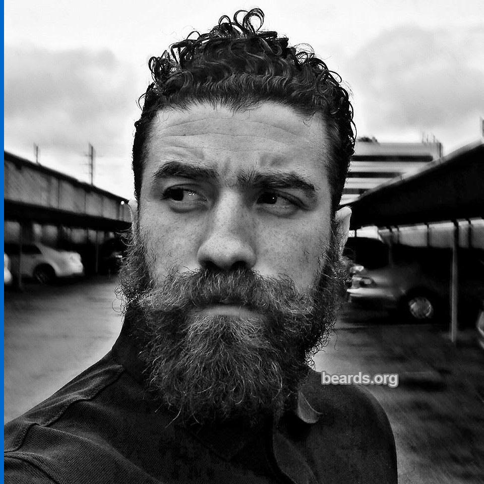 Sam, beard photo 4