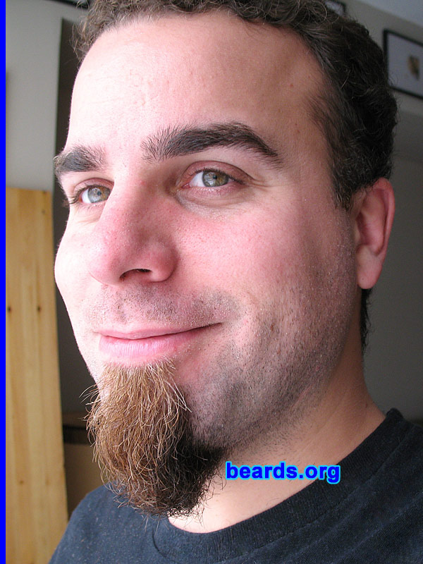 dave dave with the chin curtain beard galleries. Black Bedroom Furniture Sets. Home Design Ideas