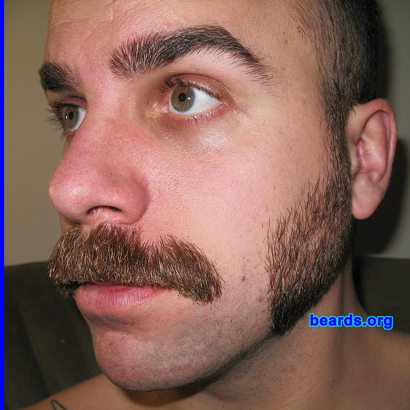 Sensational Dave Dave With Mustache And Sideburns Beards Org Beard Galleries Hairstyles For Men Maxibearus